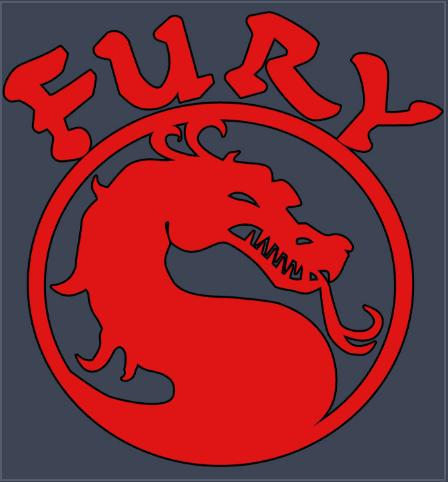 fury-combat